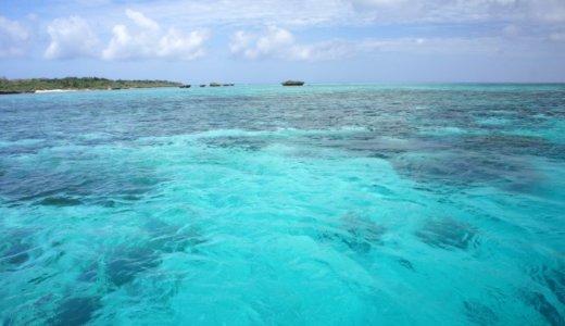 【ダイビング】マンタと泳げる石垣島の魅力